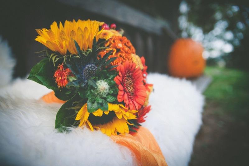 Herbsthochzeit (36 von 50)